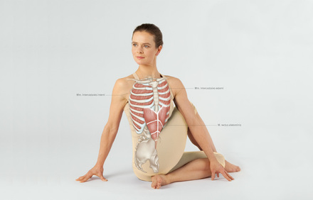 Medical Yoga - Drehsitz