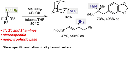 Stereospecific amination of alkylboronic esters