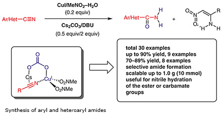Synthesis of aryl and heteroaryl amides