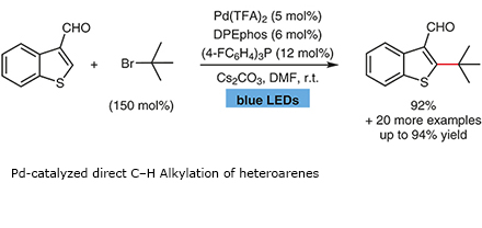 Pd-catalyzed direct C–H Alkylation of heteroarenes