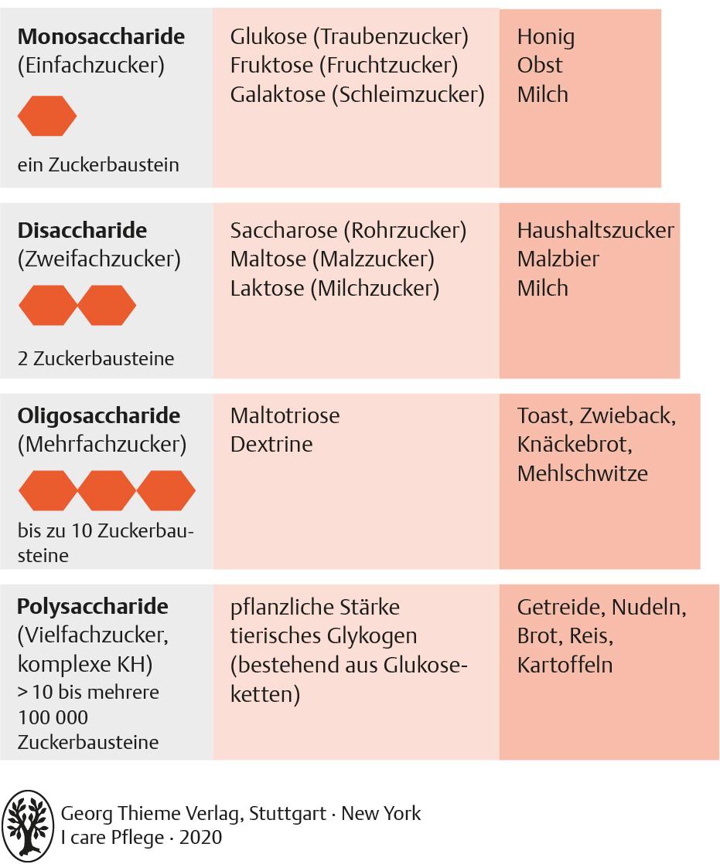 20. Ernährung   Pflegepädagogik   Georg Thieme Verlag