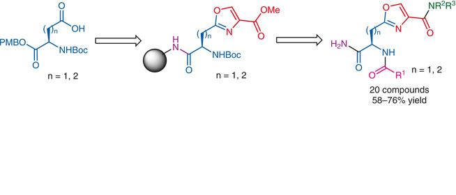 Novel Oxazole-Containing Amino Acids - Thieme Chemistry - Georg ...