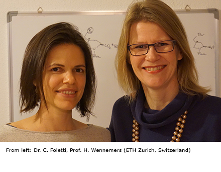From left: Dr. C. Foletti, Prof. H. Wennemers (ETH Zurich, Switzerland)