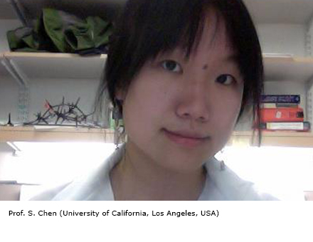 Prof. S. Chen (University of California, Los Angeles, USA)