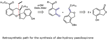 Retrosynthetic path for the synthesis of des-hydroxy paecilospirone