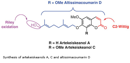 Synthesis of artekeiskeanols A, C and altissimacoumarin D