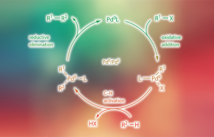 Catalytic Transformations via C—H Activation