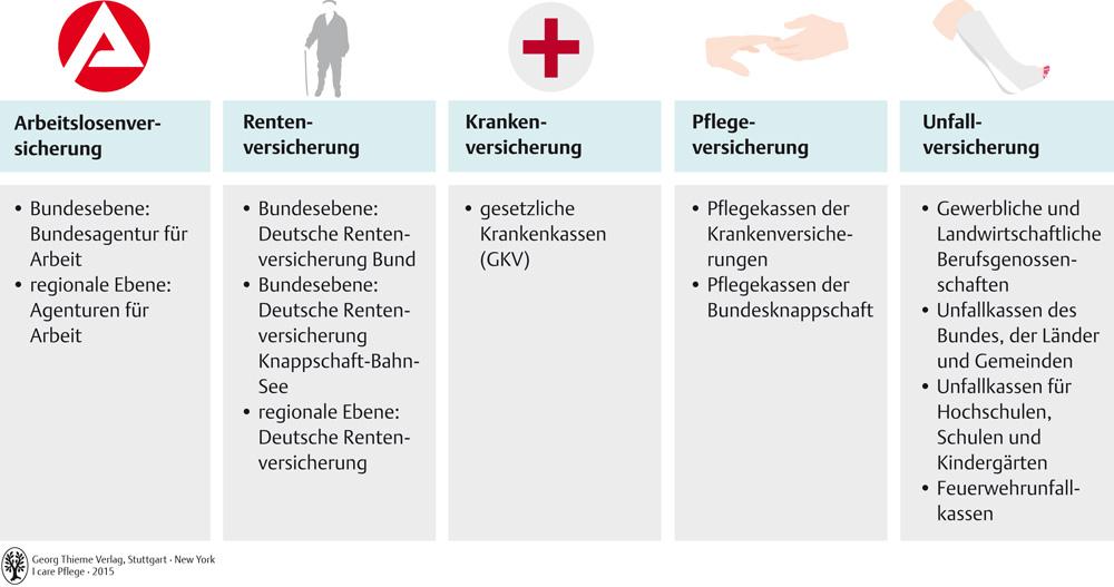 Ungewöhnlich Ebenen Der Krankenpflege Fotos - Menschliche Anatomie ...