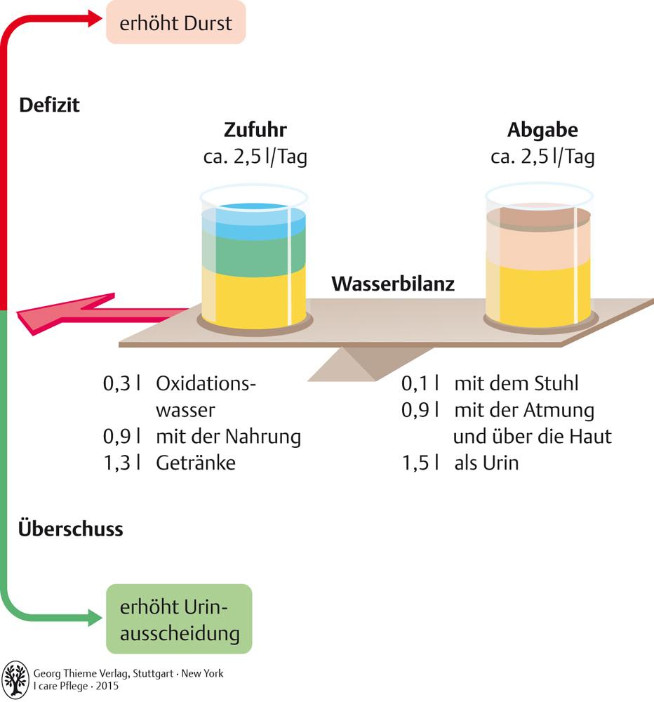 19. Essen, Trinken, Gewicht und Körperlänge - Pflegepädagogik ...