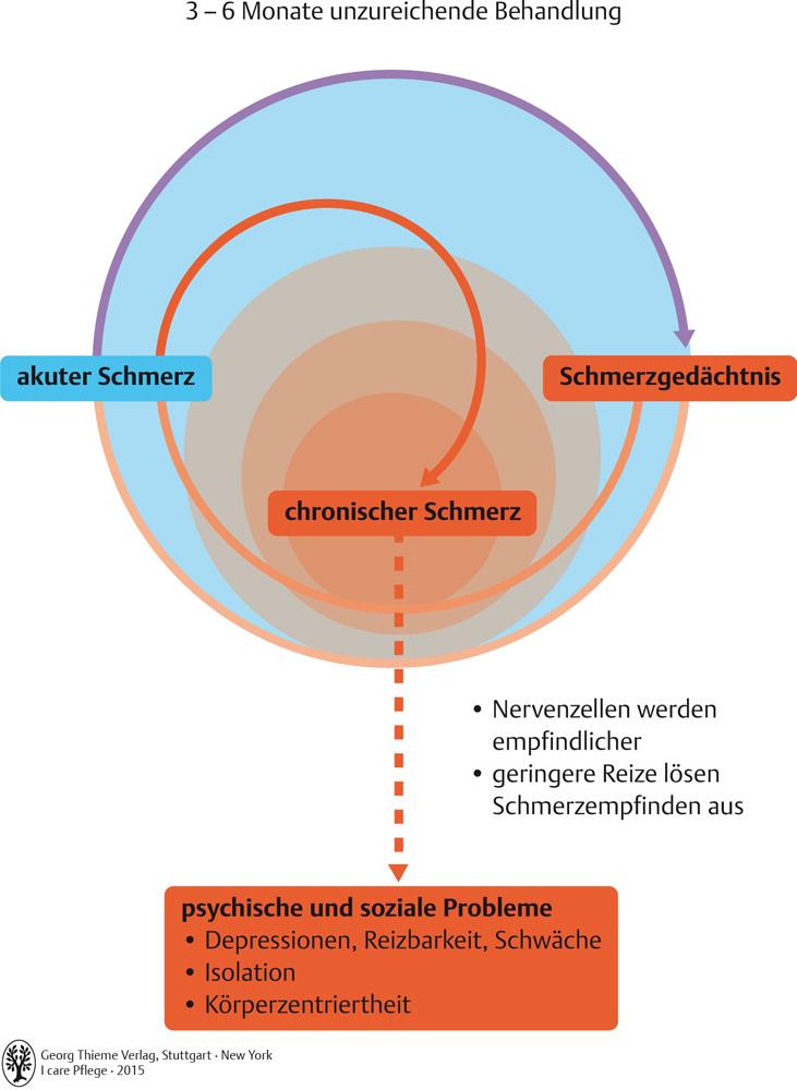Charmant Frontale Ebene Definition Anatomie Fotos - Menschliche ...