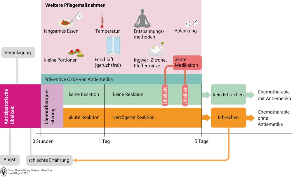 epub the structure of german oxford linguistics 2005