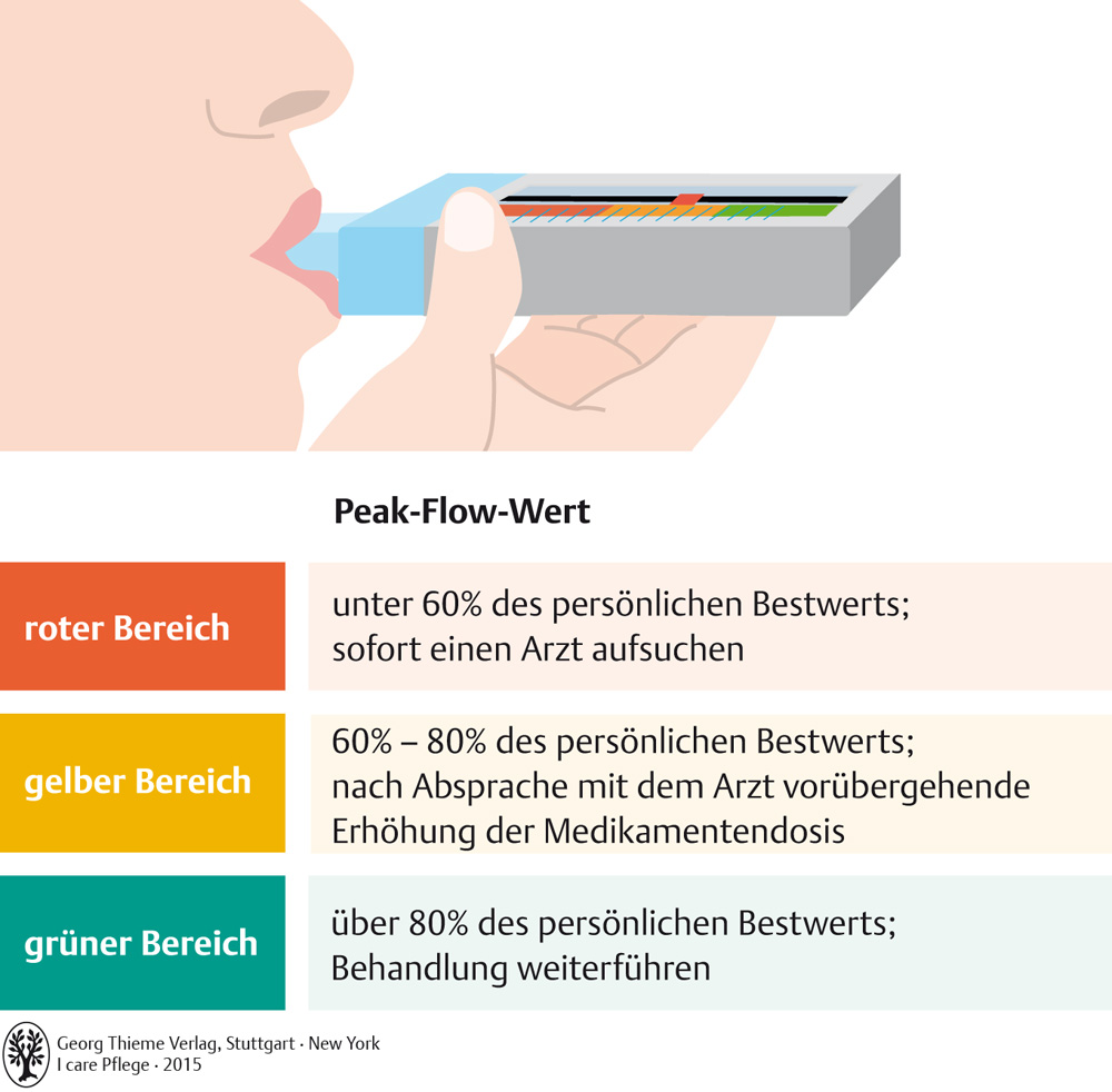 55. Atemsystem - Pflegepädagogik - Georg Thieme Verlag