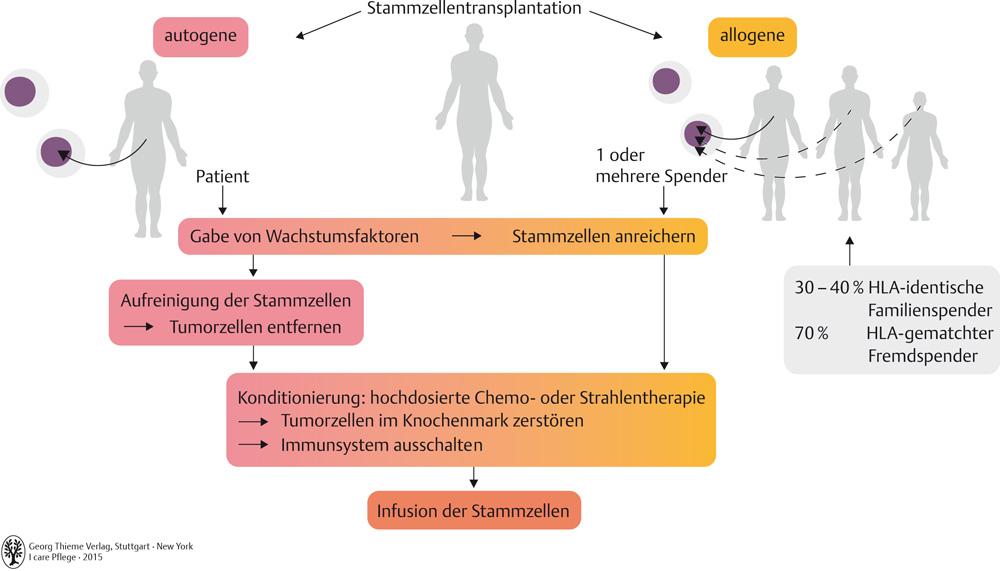59. Blut- und Immunsystem - Pflegepädagogik - Georg Thieme Verlag