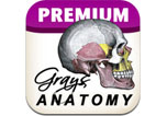 Logo Grays Anatomy App