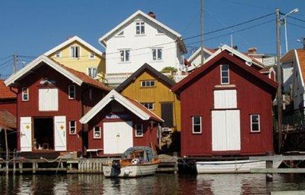 Studieren und arbeiten in skandinavien medizin im for Medizin studieren schweiz