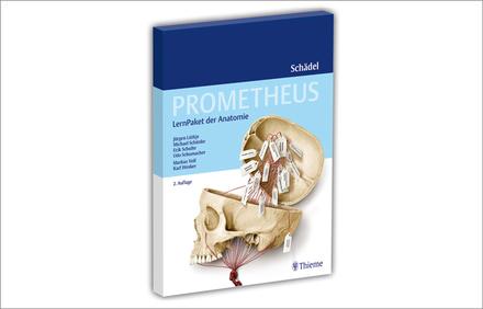 PROMETHEUS LernPaket Schädel - Vorklinik - Via medici