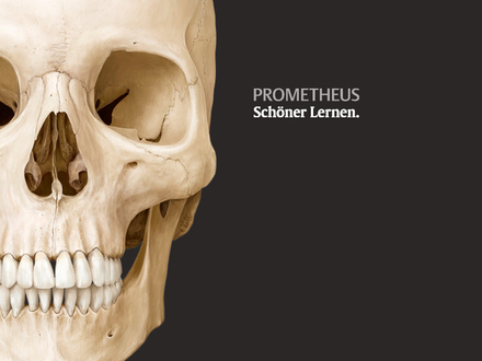 Prometheus Wallpaper 19