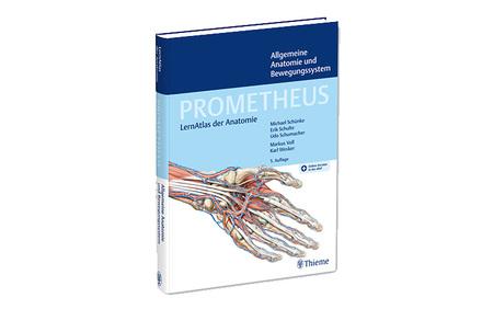 PROMETHEUS Allgemeine Anatomie und Bewegungssystem - Vorklinik - Via ...